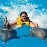 nadar con delfines cancun